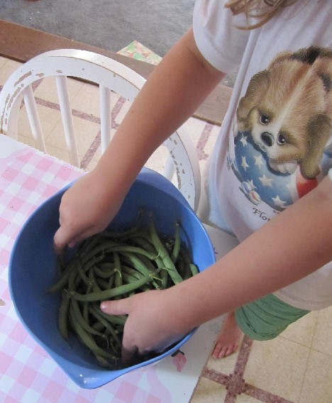 This is a trick question!  There's always one!  When I asked her how many beans she picked, she said, *one thousand*, but probably there were only 25.  Either that or I ate 500 green beans before dinner tonight.