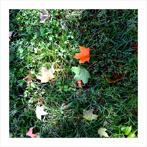 I found fall today...must be October