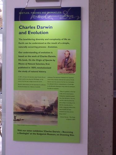 Young Darwin, University Museum of Zoology, Cambridge
