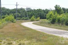 Biofuels down the road