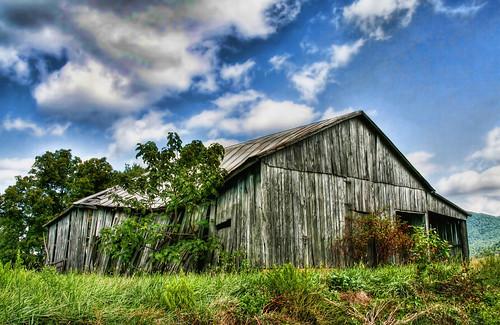 Loosing the Barn