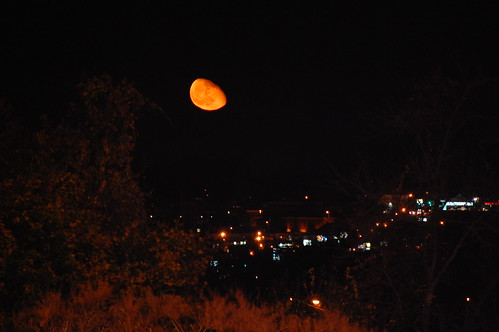 310: Bad moon on the rise