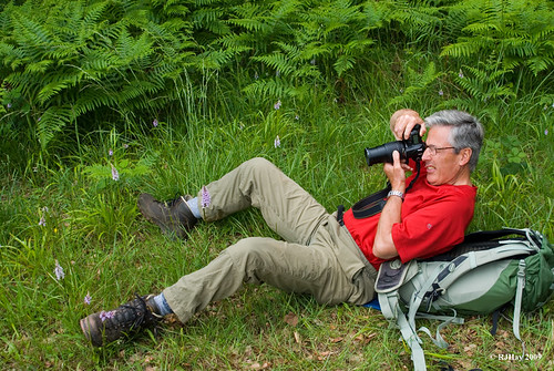 """An """"Ambling Rambler"""" Photographing Orchids Along the Offa's Dyke Path"""