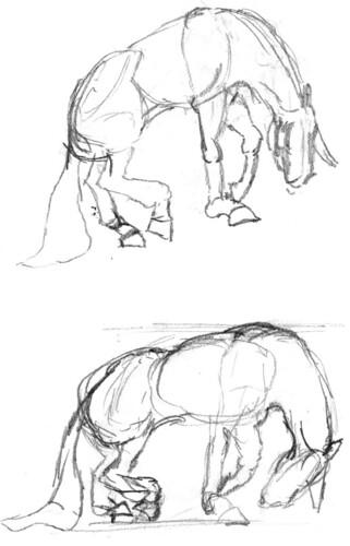 Horse, part 1