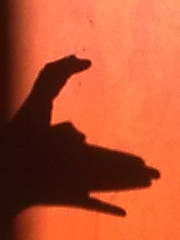 Skye's Shadow Puppet - dog