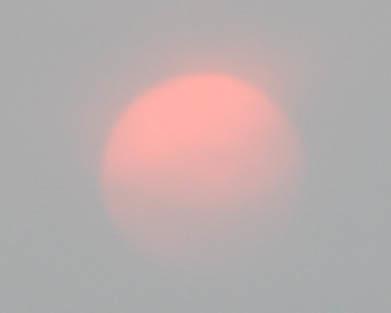 pinksun26a