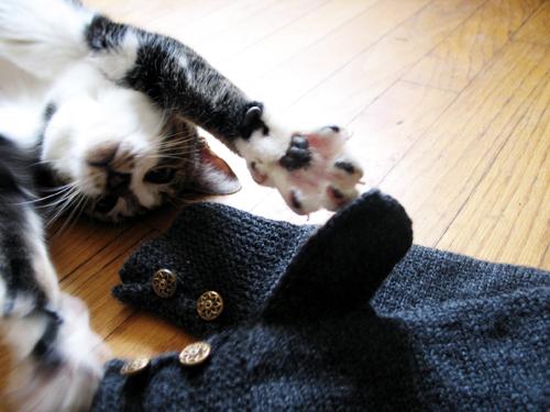 mai mittens! (by jesh\)