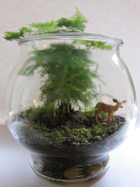 Asparagus Fern & Fawn in a Jar