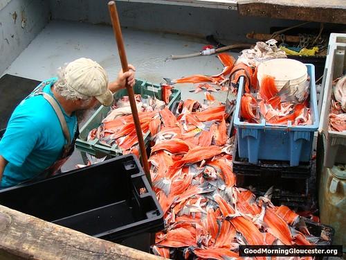 Salmon Racks Aboard The Jupiter II