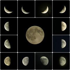 moonsaic