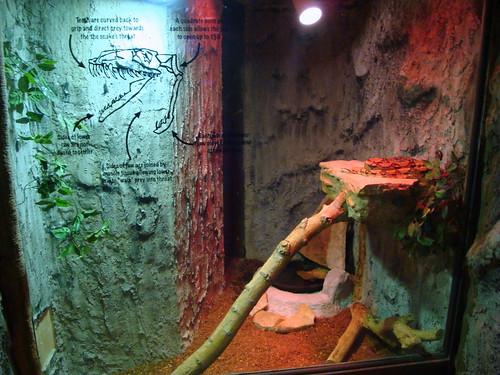 Larry's habitat