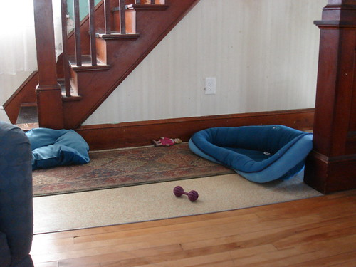 ...her bed winds up all over the hallway....