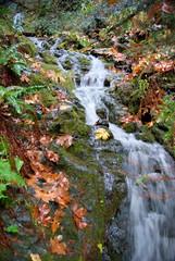 pretty little waterfall