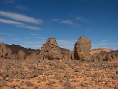 algérie 125