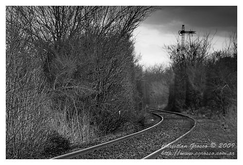 "Vias de Tren • <a style=""font-size:0.8em;"" href=""http://www.flickr.com/photos/20681585@N05/3790696632/"" target=""_blank"">View on Flickr</a>"