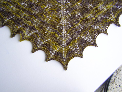 julie's wedding shawl