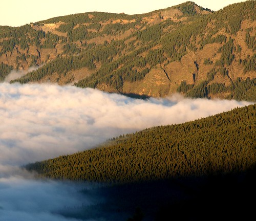 The Sea of Clouds Hugs the Mountain Slopes