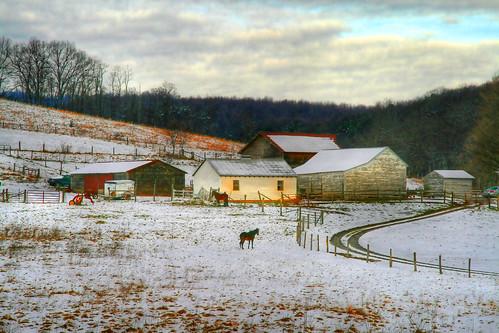 December on the Farm