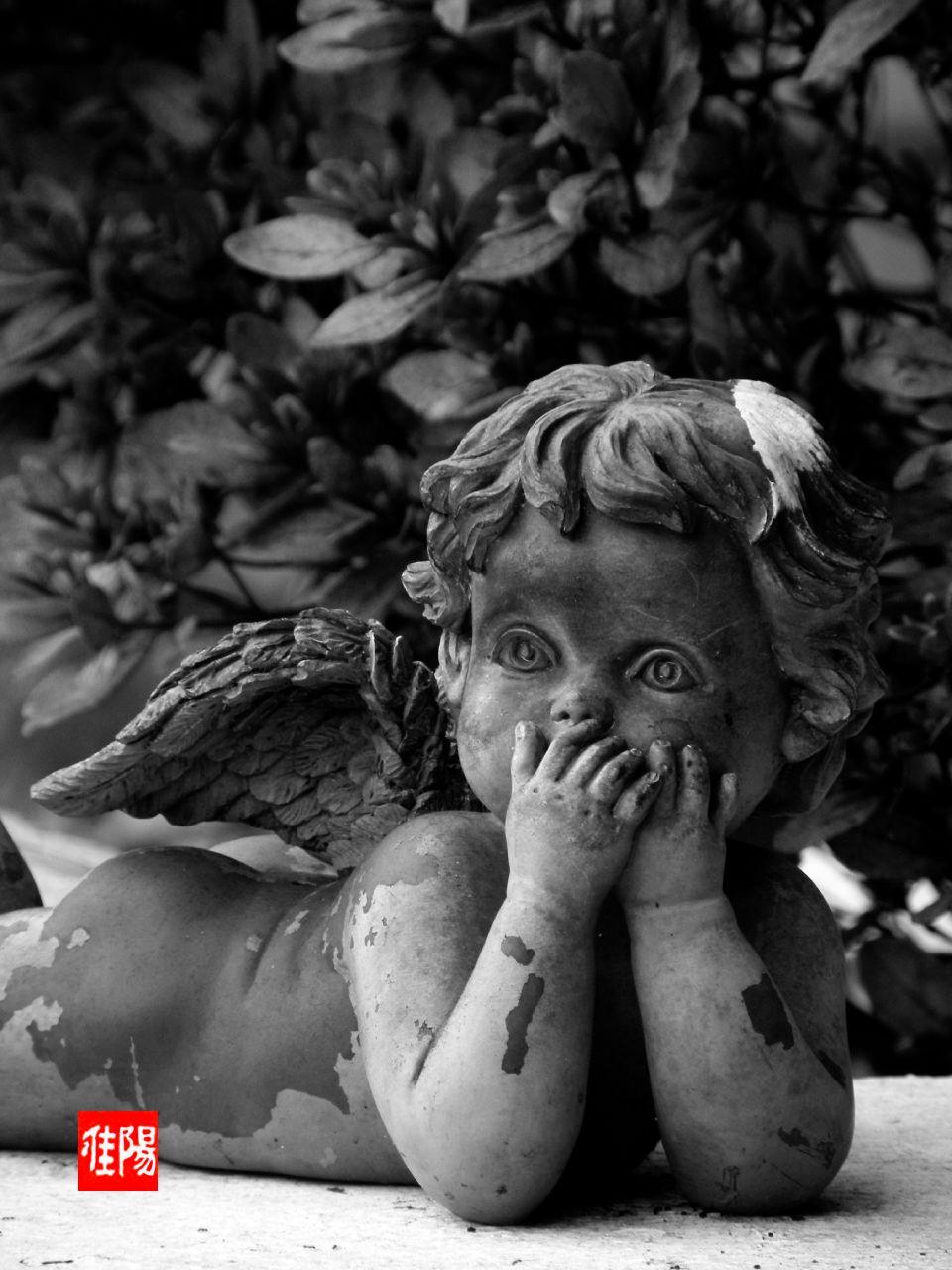 P80-Orf_CherubSculpt01_2009-09_13A