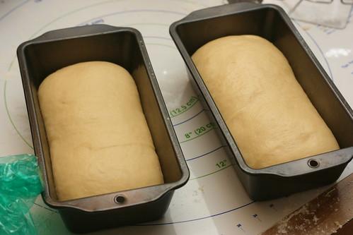 Portuguese Sweet Bread Loaves