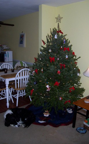 Oh, Tannenbaum by you.