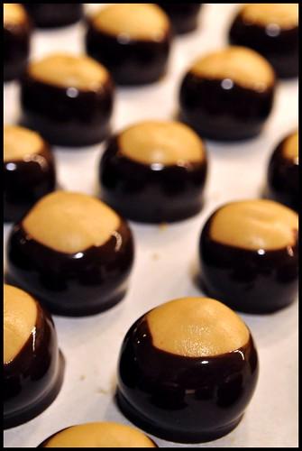 Chocolate Coated