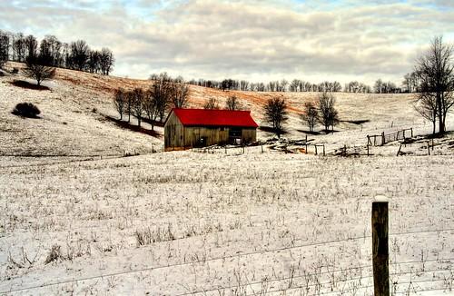An Early Blue Ridge Winter
