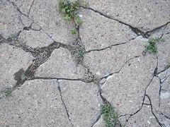 step on a crack - break your mother's back