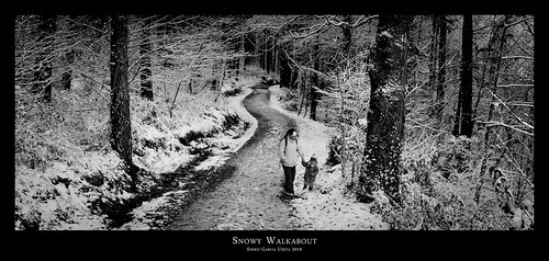 SNOWY WALKABOUT