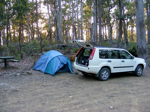 2008_0106australia20075