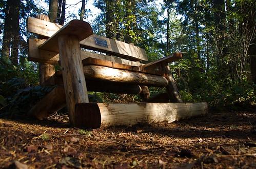 memorial bench on Cougar Mountain