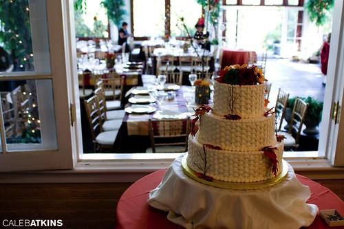 Wedding Cake at Raspberry Plain