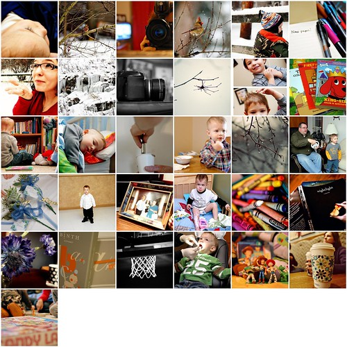 Project 365 January 2010 Mosaic