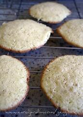 41. Cookies de coco com baunilha