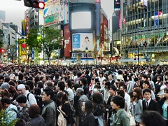 Shibuya Crossing 163