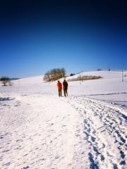 Allgaeu 2010 Januar Schnee 5