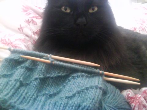 Mein knitting, ja?