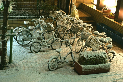 Snow in Tokyo 2010