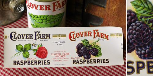 Ephemera Raspberries