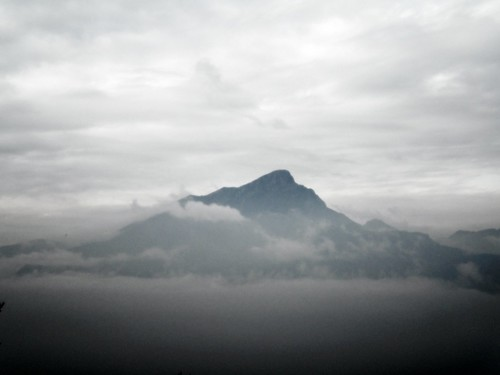 pizzocolo in the fog