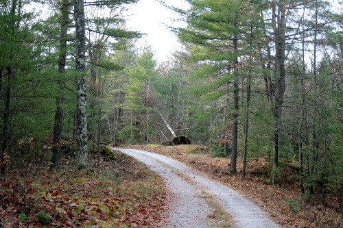 South Shore Rd, Big Gull Lake, North Frontenac