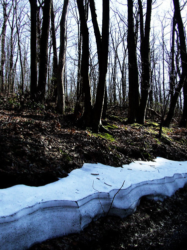 old snowdrift