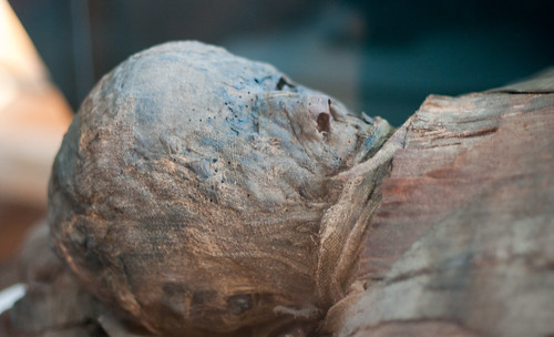 Egyptian Mummy at the Redpath museum