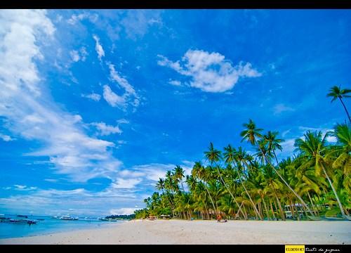 panglao island beachfront