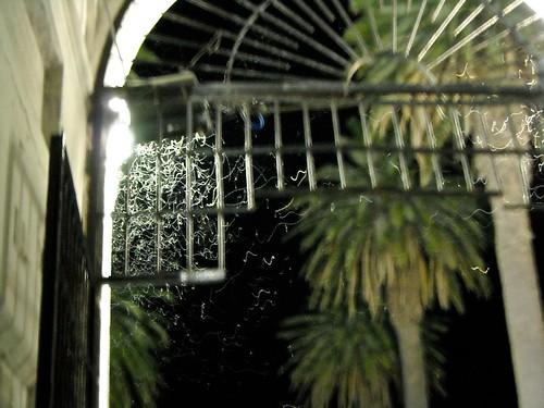 ¿Les dije que habían mosquitos?, bueno eso que parecen cintas, es un enjambre cerca de la luz