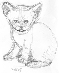 Drawing kittens, part 9