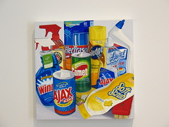 Jessica Rohrer painting: household cleaning su...