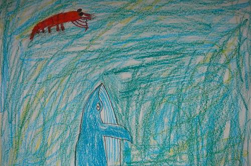 Big Krill, Bigger Whale