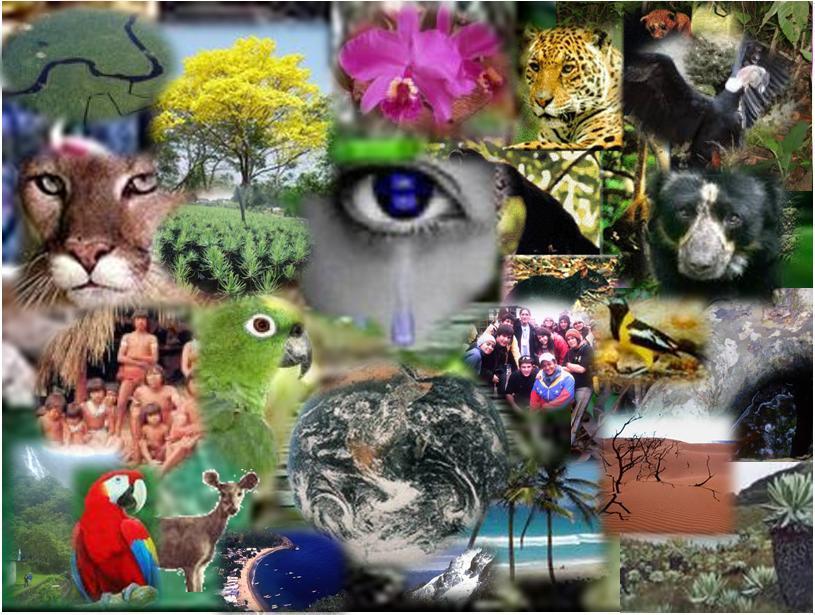 biodiversidad3
