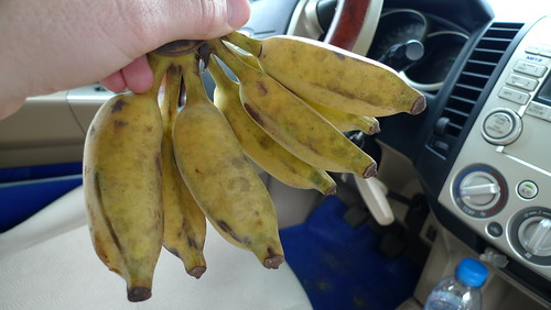 phu quoc bananas
